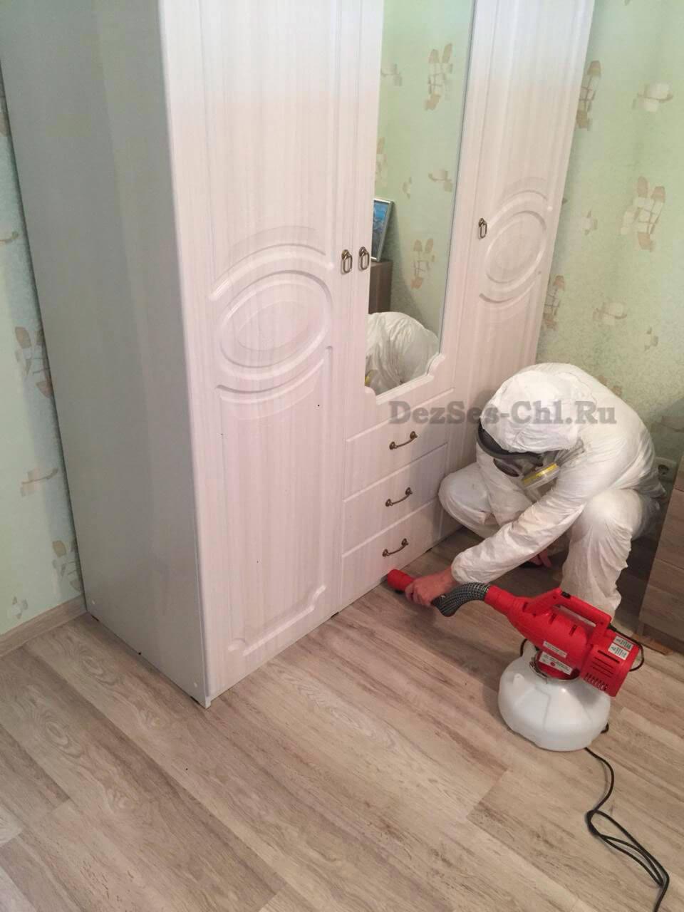 Уничтожение клопов в Челябинске